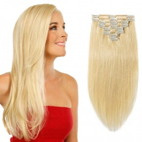 Clip In Remy Hair Extensions #24 Ash Blonde